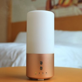H2 (100ml) Rose Gold Ultrasonic Aroma Diffuser/ Air Humidifier/ Purifier/ 7-Color LED, 4-Timer, 8 Hours Mist, Auto Off, Quiet