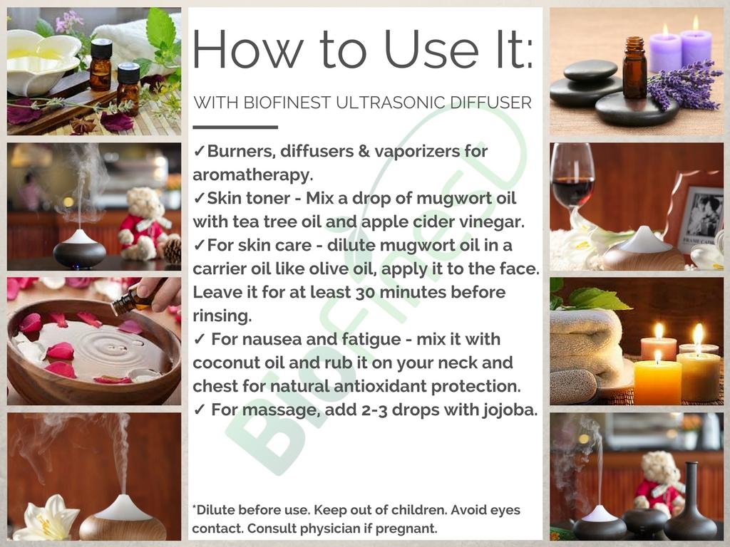 Mugwort Essential Oil 4